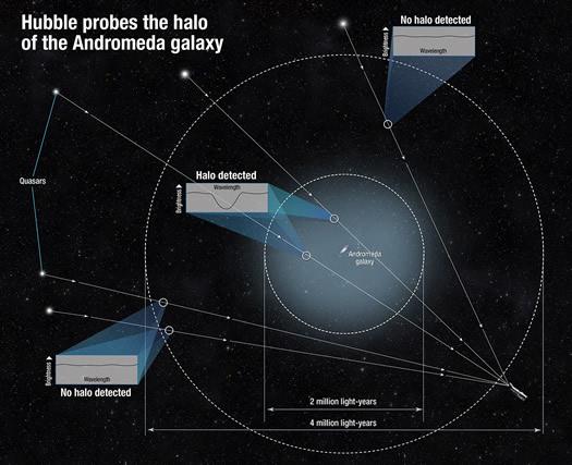 Andromeda halo